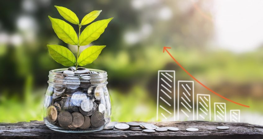 Financial growth picture, expressed as a plant
